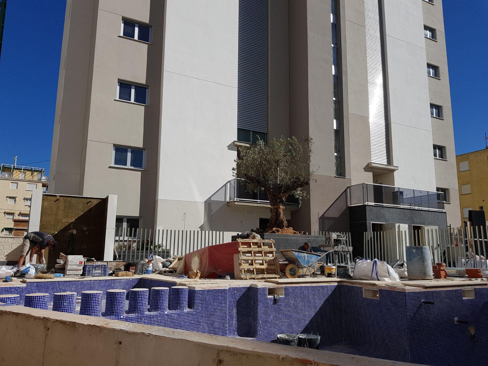 Vista de las zonas comunes. Vista de las piscina y fachada trasera del edificio.